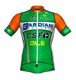 Logo de l'équipe /content/teams/logo-bardiani-csf-2018.jpg